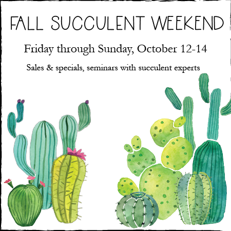 fall succulent weekend-01